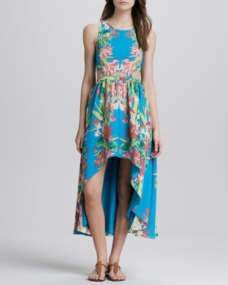 Printed Side-Cutout Dress
