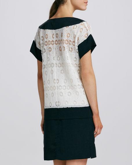 Joanna Two-Tone Lace Dress