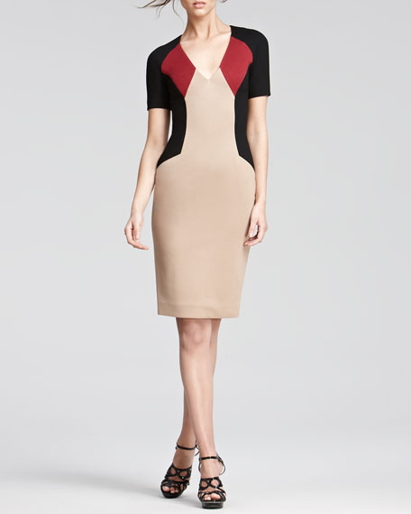 Colorblock Sheath