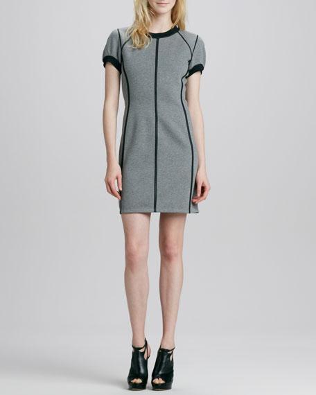 Nevasa Outlined Ponte Dress