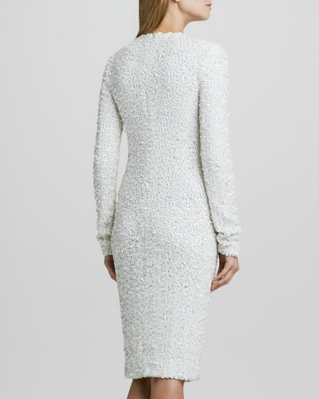 Adrienne Fitted Sequined Dress