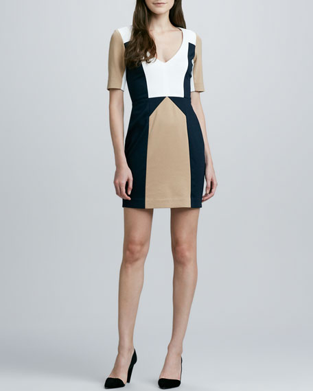 Harriet Fitted Colorblock Dress
