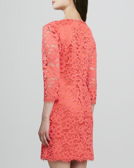 Geddes Scalloped Lace Dress