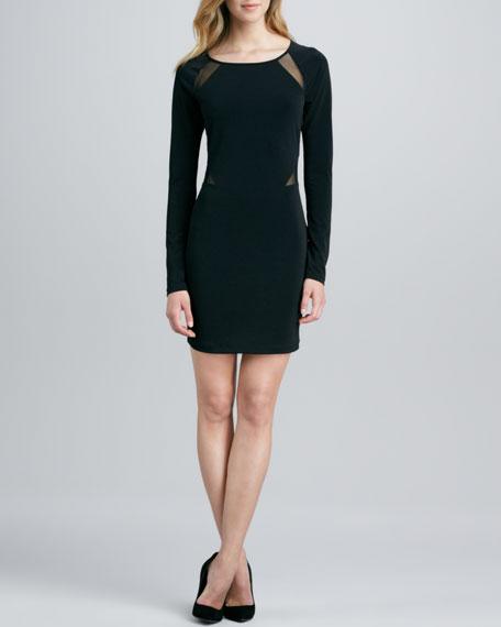 Katrina Long-Sleeve Dress with Sheer Insets