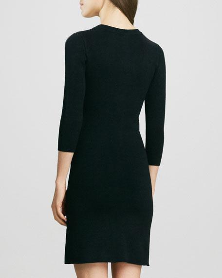 Animal-Print Raglan-Sleeve Knit Dress