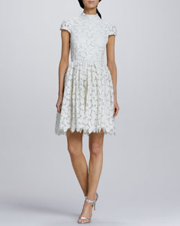 Alice + Olivia Fairy Shimmery Lace Dress