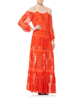 Alexis Cevilla Embroidered Sheer Dress