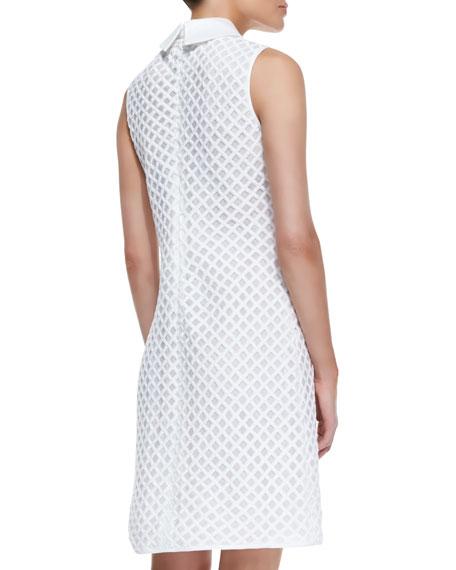 Perla Cotton Dress With Detachable Collar