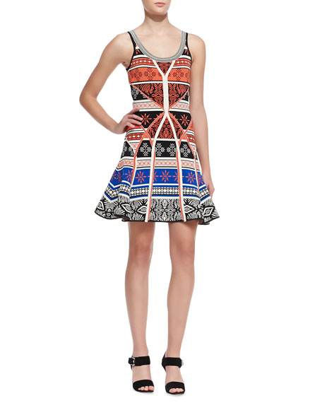 Ilsa Sleeveless Printed Fit-and-Flare Dress
