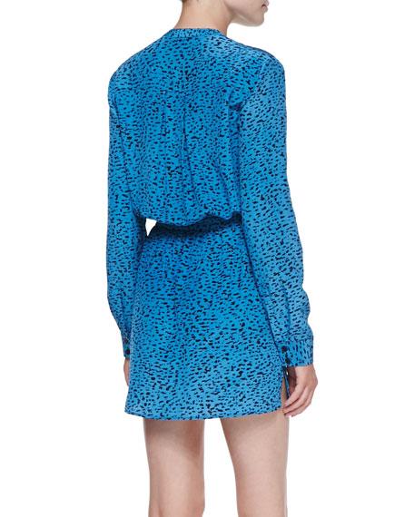 Silk Chalk-Print Tie-Waist Long-Sleeve Dress