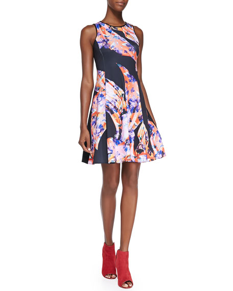 Clover Canyon Sleeveless Printed Fit & Flare Dress