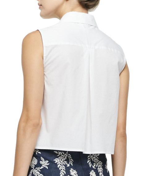 Cisco Sleeveless Point-Collar Blouse