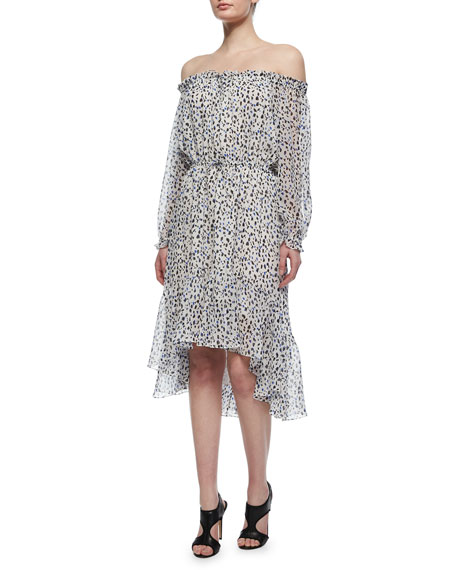 Diane von Furstenberg Camila Animal-Print Silk Dress