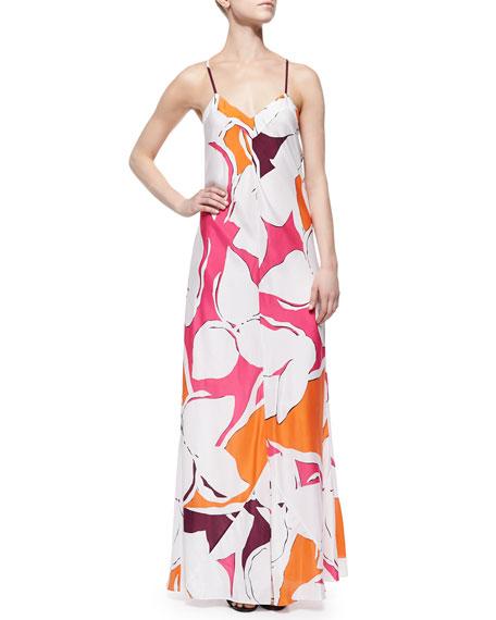 Diane von Furstenberg Garden-Print Silk Maxi Dress