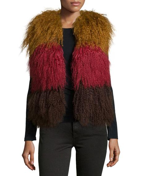 Anna Sui Colorblock Lamb Fur Vest, Nutmeg Multi