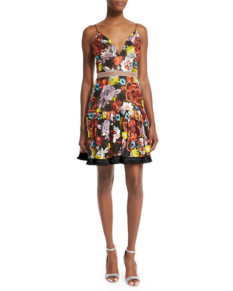 Alexis Sleeveless Yiana Floral-Embroidered A-Line Dress, Multicolor