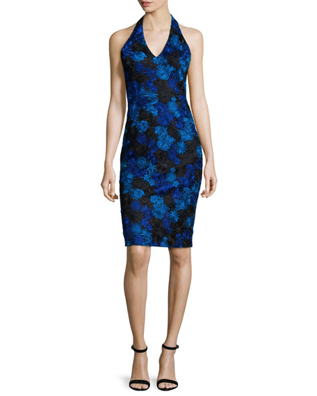 David Meister Halter-Neck Floral-Lace Cocktail Dress, Cobalt/Black