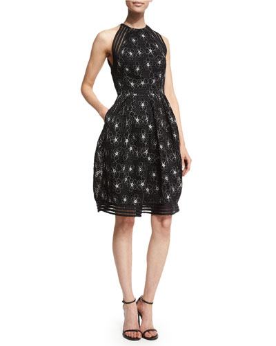 Sleeveless Floral-Embroidered Mesh Fit & Flare Dress