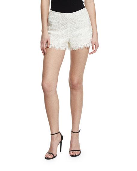 Alexis Amilina Long-Sleeve Lace Silk-Trim Top & Gigi