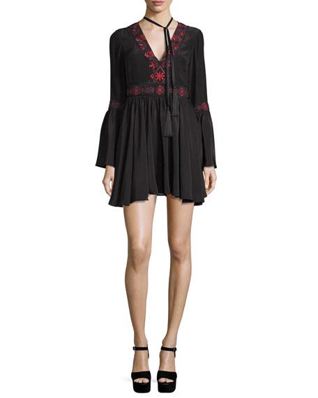 Zane Embroidered Silk Mini Dress, Black Multi