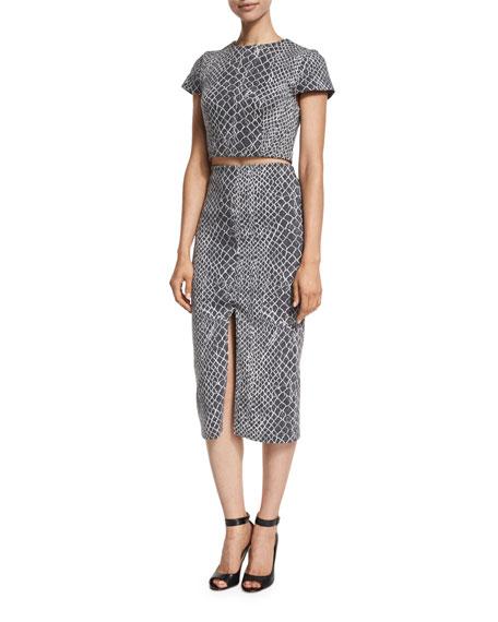 Spiga Snakeskin-Print Mid-Length Pencil Skirt, Multicolor