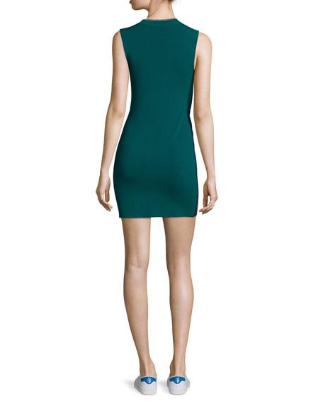 Lucine Sleeveless Two-Tone Sheath Dress
