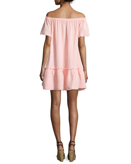Off-the-Shoulder Shirred Mini Dress