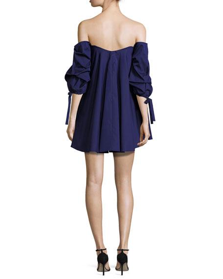 Gabriella Off-the-Shoulder Bustier Shift Dress