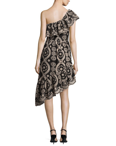 Pamela Asymmetric Embroidered Cotton Dress, Black