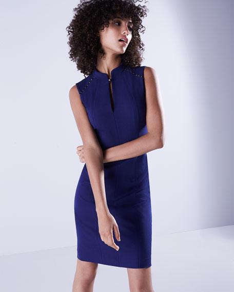 Michelle Sleeveless Embellished Sheath Dress