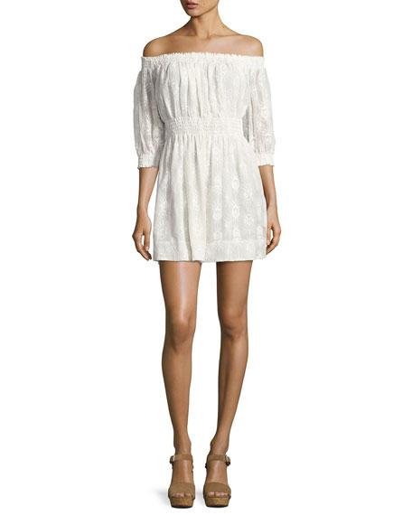 Selina Embroidered Off-the-Shoulder Dress