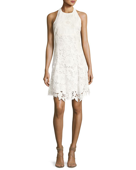 Alice + Olivia Susan Embroidered Halter Flare Dress,