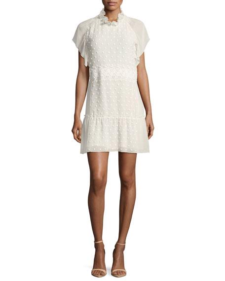 Dotted Chiffon Lace Mini Dress