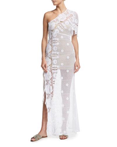 Elora Sheer Lace Maxi Dress Coverup
