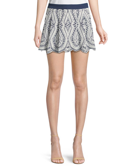 Larissa Embroidered Mini Skirt