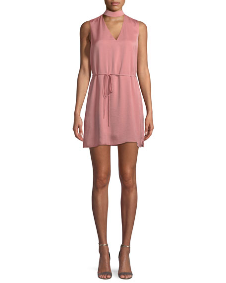 Cupcakes and Cashmere Hansel V-Neck Mini Dress with