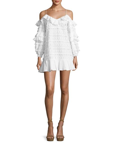 Calypso Cold-Shoulder Embroidered Dress