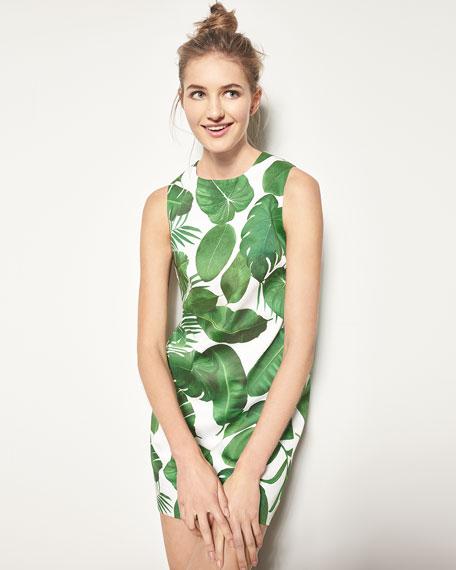 Coley Sleeveless Palm-Leaf Print A-Line Dress