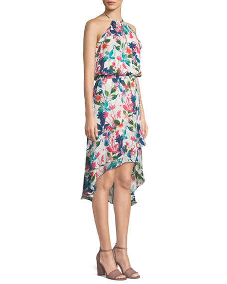 Allister Floral-Print Silk Dress