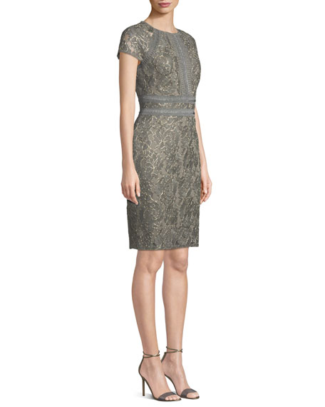 Tadashi Shoji Runyon Lace Embroidered Short-Sleeve Dress