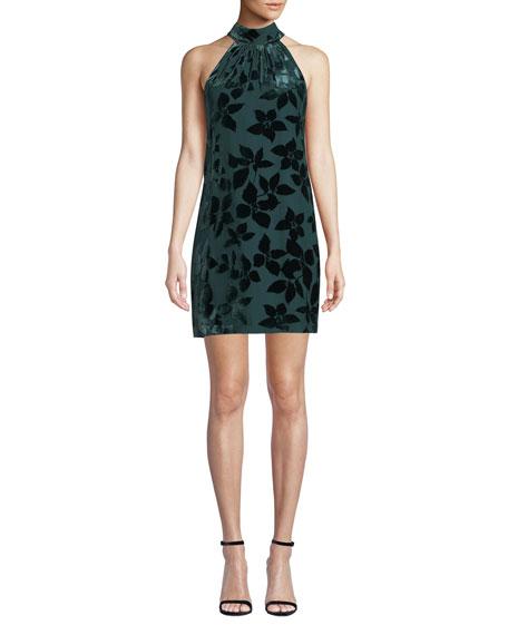 Spree Velvet Burnout Halter Dress