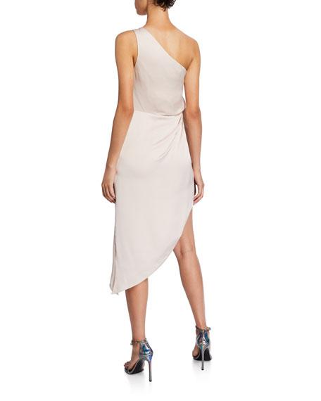 Ramy Brook Kathleen One-Shoulder Asymmetric Dress