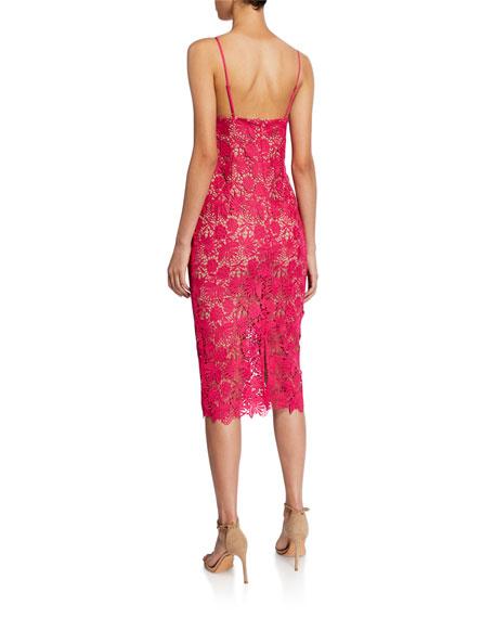 Bardot Tayla Lace Scalloped Midi Dress