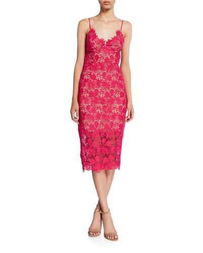 Tayla Lace Scalloped Midi Dress
