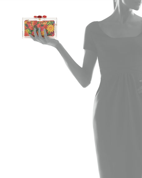 Pandora Rose Perspex Clutch Bag