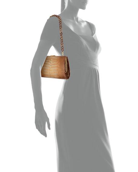 78a4ef96d2c3 Nancy Gonzalez Colette Crocodile Slim Exposed-Frame Clutch Bag ...