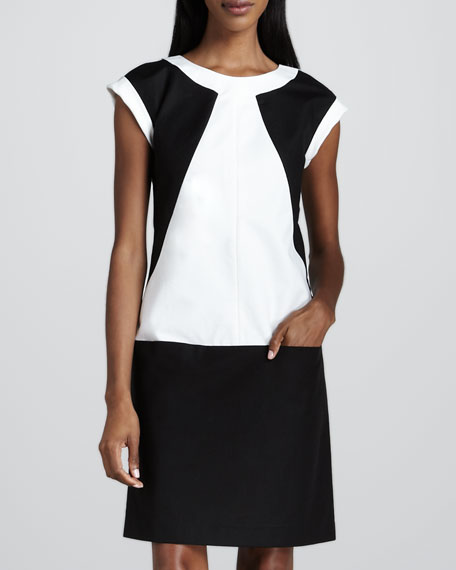 Colorblock Twill Dress