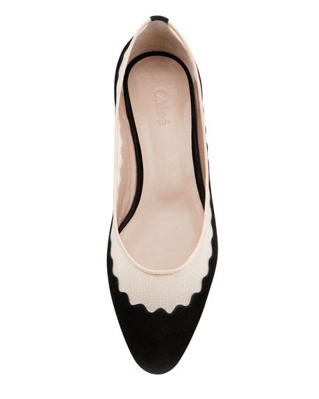 Scalloped Suede-Mesh Ballerina Flat