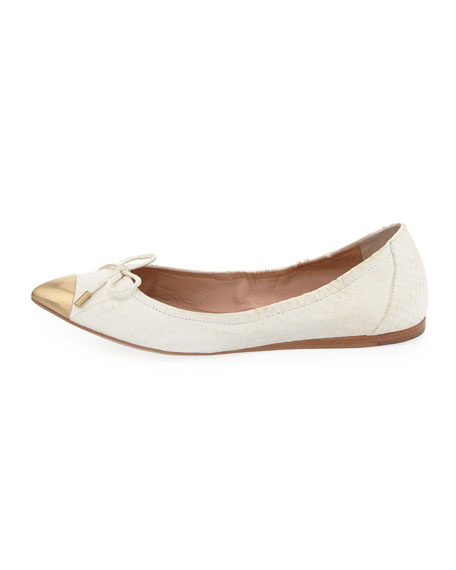 Chelsie Metal Pointed Toe Flat