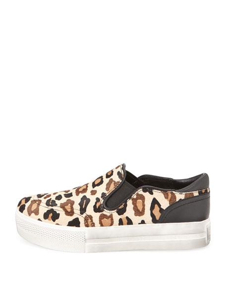 Jungle Leopard-Print Calf Hair Sneaker